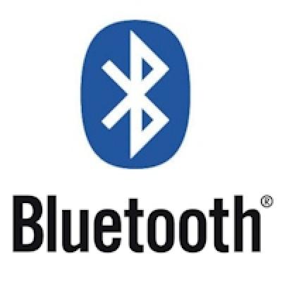 Bluetooth Parrot